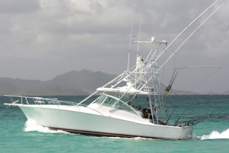 41' sport fishing boat 12 passenger capacity